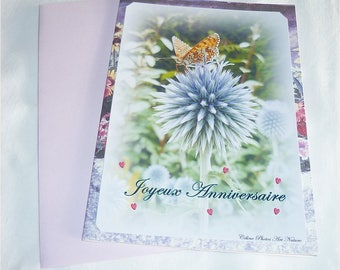 Carte double Anniversaire Papillon et chardon de Céline Photos Art Nature
