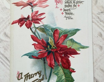 "Antique embossed Christmas postcard Friendship Poinsettia Raphael Tuck & Sons ""The Poinsettia"" Series No 506 Paper Ephemera Scrapbooking"