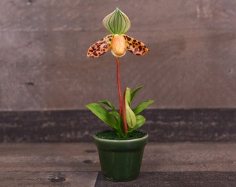 Clay Flowers Art Handmade Mini Orchid Lady Slippers Orange Spotted Cute Hand Painted Flower