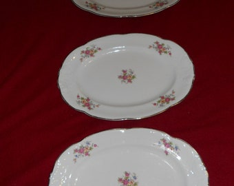 Walbrych China-Sherton Oval Serving Platters-Set of 3