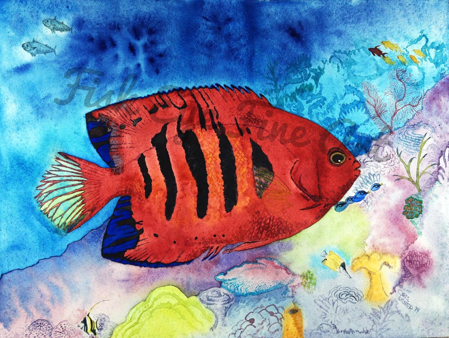 Flame Angel Fish Watercolor Tropical Fish Art Painting High