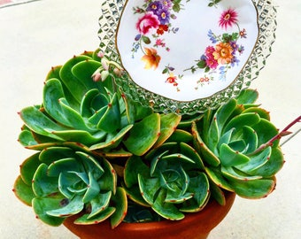 Blanche • Mini Floral Potted Plant Vintage Glass Garden Flower Decor • Yard Art • Shabby Chic • China