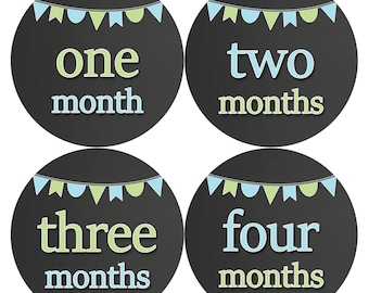 Baby Month Stickers, Baby Boy Gift, Milestone Stickers, Monthly Sticker, Monthly Baby Boy Stickers, Baby Bodysuit, Baby Shower Gift 335