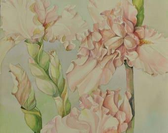 Floral Fine Watercolor Painting Irises Flower Art - Original watercolor painting, floral still life, botanical art, nature art, wall decor