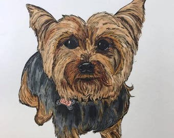 9x12 inch Hand drawn pet portrait - made to order