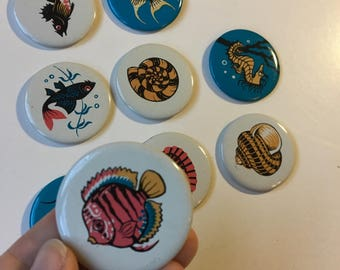 Vintage Set Soviet Estonian Badges Pin Fish Shells Seahorse