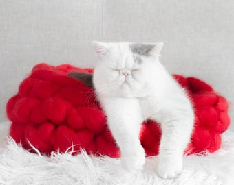 Cat Bed, Crocheted Giant Merino Wool, Crocheted Cosy Pet Bed, Handmade - Rudolph Red