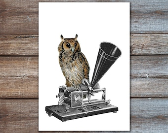 Owl sitting on Phonograph Poster - A4. Owl art poster print