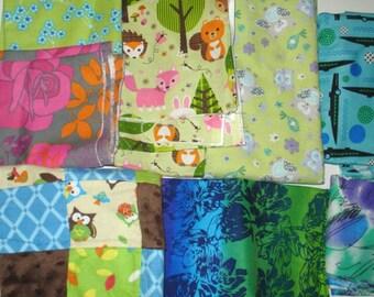 CLEARANCE Fabric Lot: Woodland Animals, Alligators, Flowers, Owls.