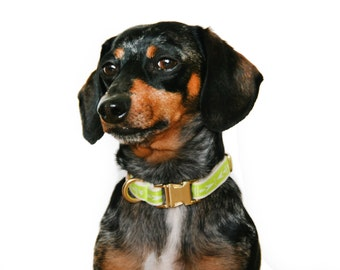 "Sale, Neon Chartreuse Adjustable 1/2"" wide dog collar: Size Small Arrowhead Print"