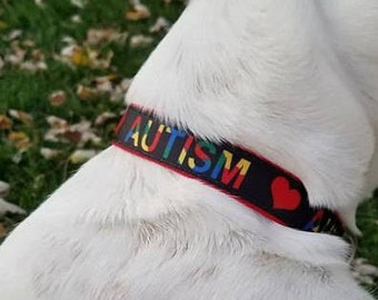Autism Awareness Collars <3