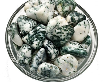 DENDRITIC TREE AGATE Tumbled Stone Crystal Healing and Stone Connection to Nature Plants Spirits #TA01
