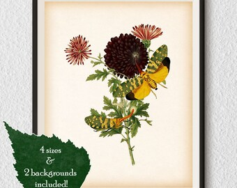 Vintage insect print, Insect art, Lanternfly, Floral print vintage, Antique wall art, Home wall art, Instant download print, Printable art