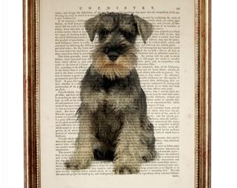 Miniature Schnauzer Art, Recycled Dictionary Art Print, Schnauzer Gifts, Schnauzer Wall Art, Schnauzer Dog Art, Dog Prints, Dog Wall Decor
