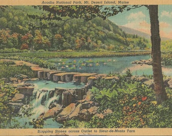Vintage 1940's Linen Postcard of Acadia National Park in Mount Desert Maine and Stepping Stones Across Outlet to Sieur-de-Monts Tarn
