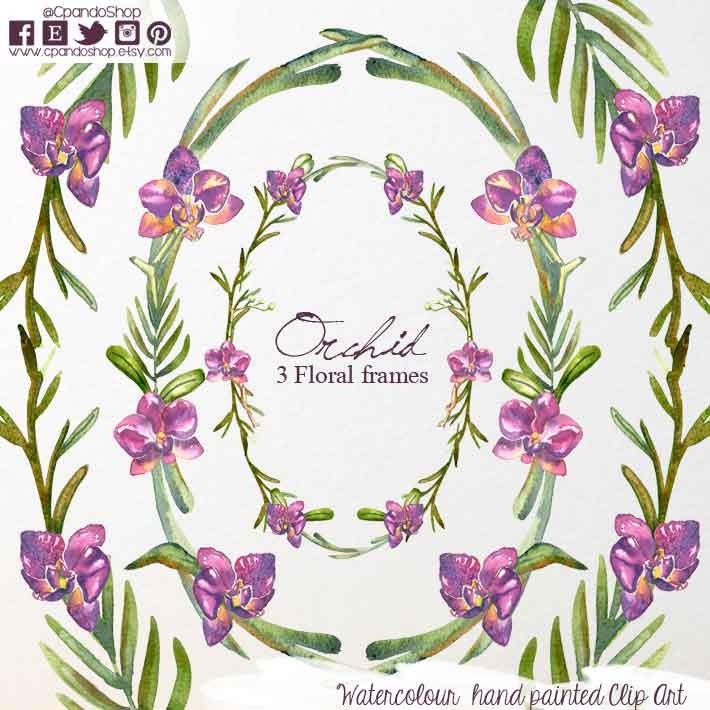 Marco floral de orquideas marco de flores marco clip art