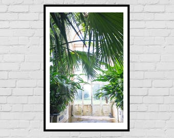 Victorian Greenhouse Door with Ferns photography digital print