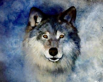 Wolf Digital Painting