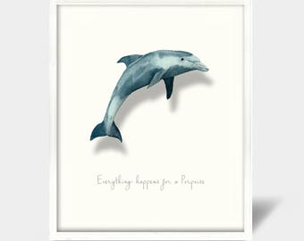 Everything happens for a Porpoise