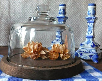 Mid Century Glass Cloche. Bell jar. Glass dome display. Vintage cheese board. Display dome.