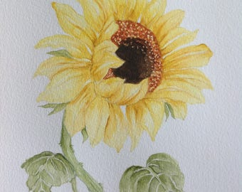 Original Watercolor Painting SUNFLOWER Watercolor Flowers, Wall Decor, Flower Painting, Botanical, Yellow, Watercolor Sunflower, Kitchen Art