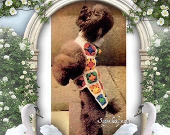 Vintage dog granny square rainbow dog coat crochet pattern in PDF instant download version  , PDF downloadable