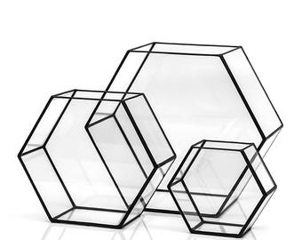 Geometric Honeycomb Terrarium ~ Glass Terrarium ~ Geometric Planter ~ Wedding Decor ~ Succulent Terrarium ~ Loft Style ~ Home Decor