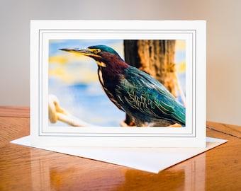 Green Heron Photograph Card / Blank Inside / Nature Photo Note Card / Greeting Card Art
