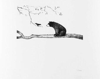 Bear on Branch Print Large