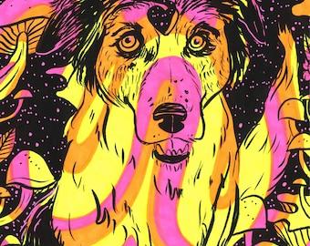 Psychedelic Pet Portraits COMMISSION SLOTS