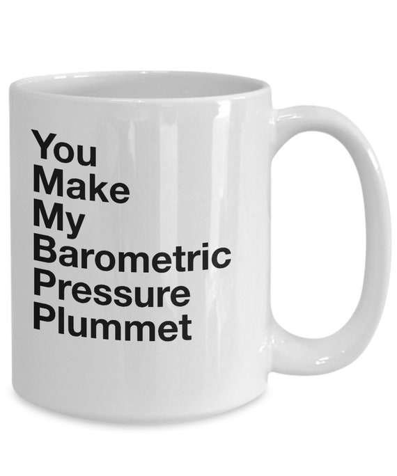 Gifts for people who love weather  you make my barometric pressure plummet  weather geek coffee or tea mug