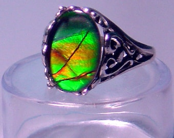 Ammolite and Sterling Filigree Statement Ring