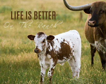 Life Is Better On The Ranch Card