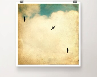It takes more than one swallow... - Fine Art Print Birds Sky vintage texture flying clouds turquoise green yellow summer flock bird photo