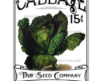 Vintage Illustration Cabbage Seed Packet Digital Download Vegetable Transfer Clip Art