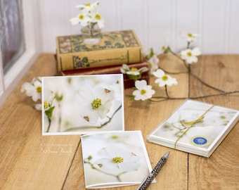 floral notecards, dogwood, boxed set of 6, photo notecards, note cards
