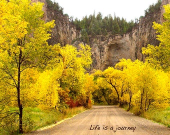 Life Is A Journey, Nature Photography, Motivational, Autumn, Fall, Yellow, Trees, Zen Path, Peaceful Nature