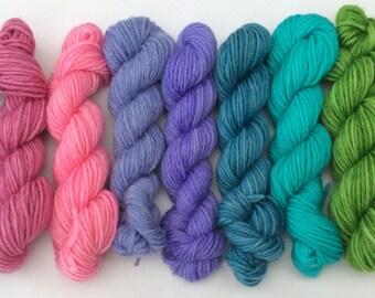 Some Kind of Rainbow - mini-skein set 360 yds