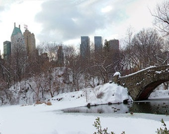 Wall art - Central Park - Photography - Gift -  Print - Poster -  Photograph - Photo - Winter - Bridge