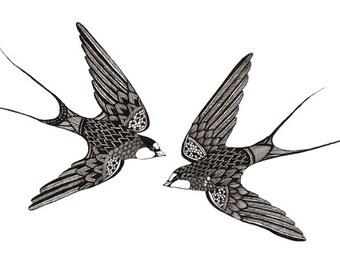 Swifts Art Print 5x7