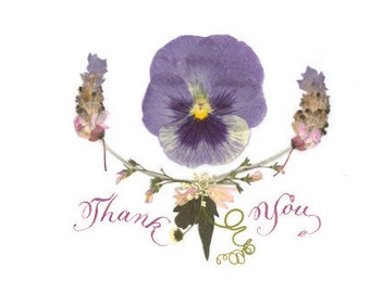 PANSY THANK YOU Notecard