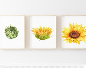 Sunflower Prints Set of 3-Sunflower Art Prints-Blooming Sunflowers-Fall Prints-Autumn Prints-Watercolor Sunflowers Fall-Instant Download