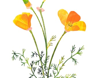California Poppies - Giclee Print of an Original Collage