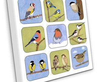Small British Birds on Canvas