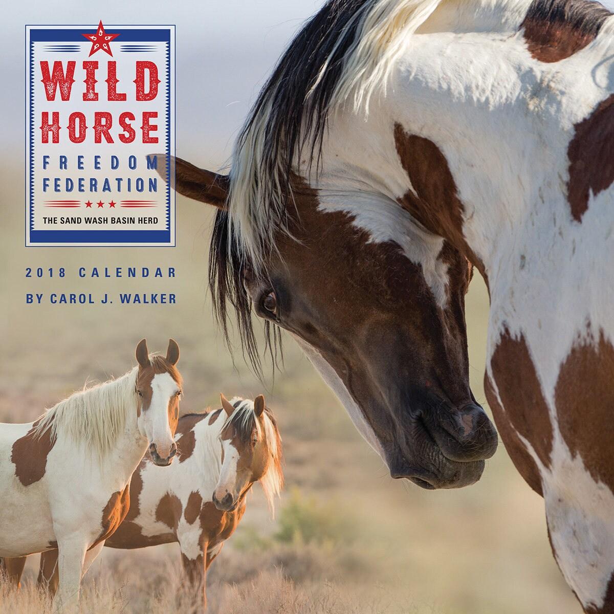 neu wildes pferd freiheit f deration 2018 wild horse. Black Bedroom Furniture Sets. Home Design Ideas