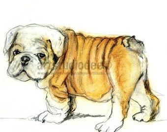 English Bulldog Art Print of Original Artwork – 8x10 or A4 Dog Art Print Size, Bulldog Painting, Dog Lovers Gifts, Bulldog Puppy Print