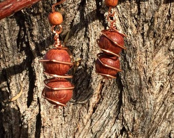 Earthy Wooden Earrings