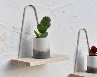 Modern Hanging Wall Planter Maple Succulent Planter