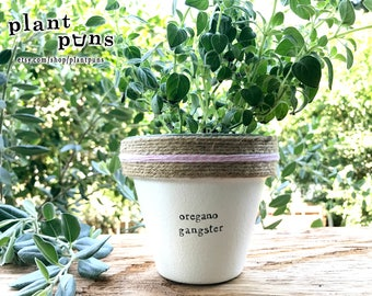 """4"""" Oregano Gangster » Plant Indoor and Outdoor Pot or Planter"""