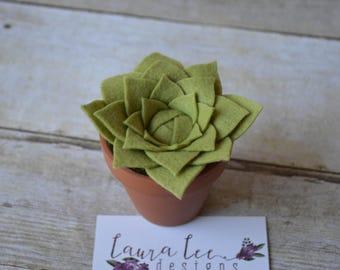 Felt Succulent Plant in Mini Pot, Trendy Home Decor, Wedding Decor, Mother's Day, Easter, Felt Flowers, Birthday, Office Decor, Shelf Decor